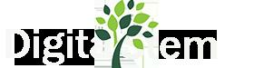 digitalstem logo